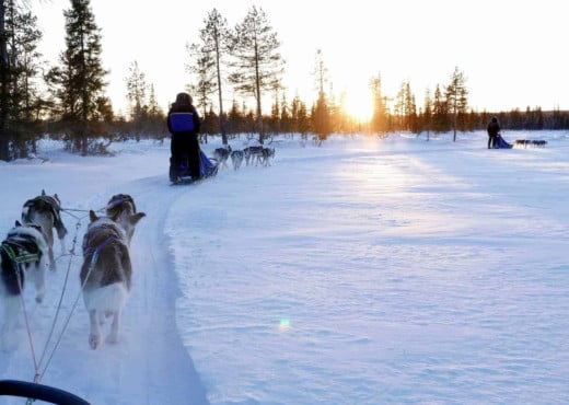 P1170465 Arctic Adventure Expedities homepage