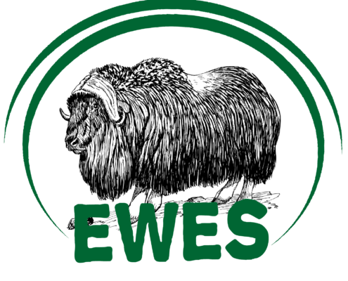 ewes Over ons