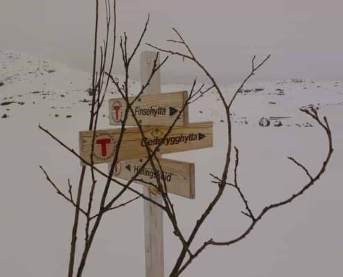 Wegwijzers in de sneeuw