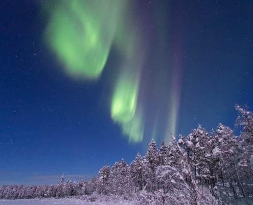 Kiruna 2019 02 SG 217