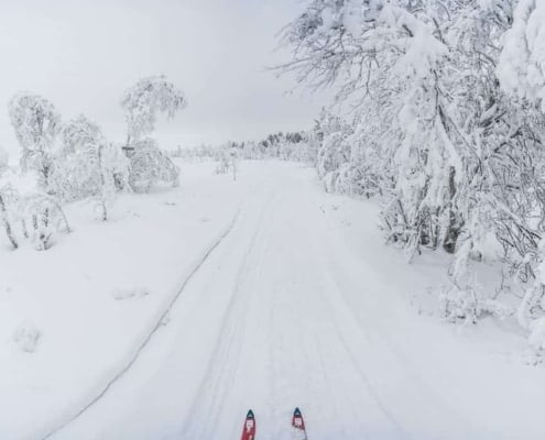 Winter wonderland in Zweeds Lapland