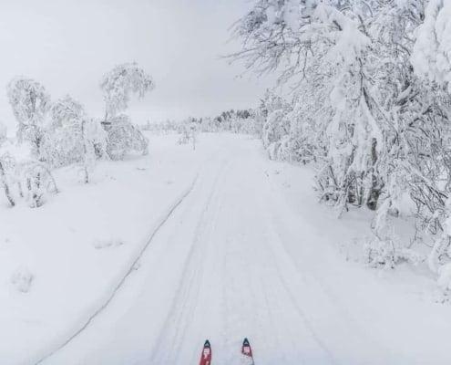 Kiruna 2019 02 SG 82