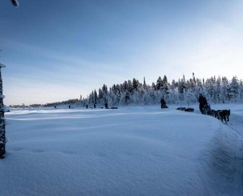 Arctic Adventure 2020 084 Martijn Coenen