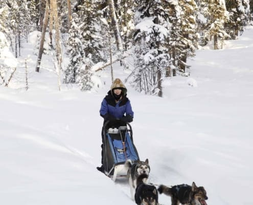 Arctic Adventure 2020 141 WOMEN ONLY EXPEDITION