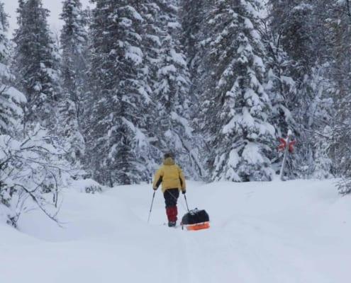 Arctic Adventure 2020 157 Ariane Moussault