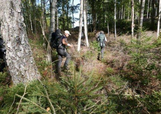 Kano Wandel Trekking Zuid Zweden 2020 09 022 Herfst Kano & Wandel trekking in Zuid Zweden