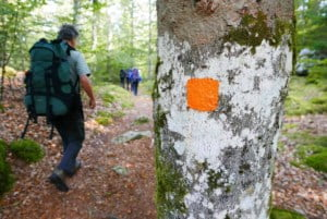 Kano Wandel Trekking Zuid Zweden 2020 09 028 Herfst Kano & Wandel trekking in Zuid Zweden